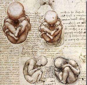 【脳力開発】フラワーオブライフ「右脳と左脳を統合せよ!!」