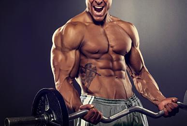 筋肉で体重を増やしたい人必見!!「体重増加には上半身重視より下半身重視で鍛えた方が効率的である。」