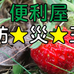 便利屋防災王12