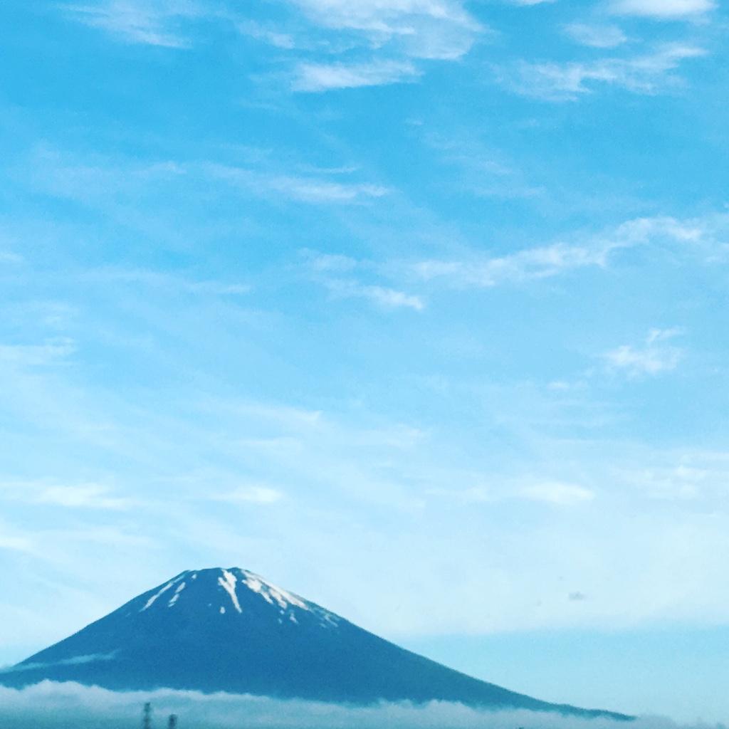 『チョコモナカジャンボで鳩使いになった日』千葉県柏市で店舗設営準備|便利屋日報