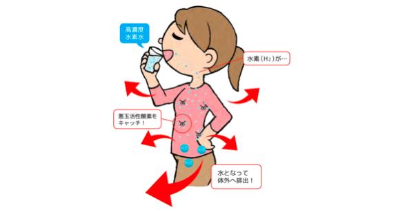 水素なら悪玉活性酸素を積極的に無害化し水として排出させてくれるのです。副作用はありませんので安心して飲んで頂けます。