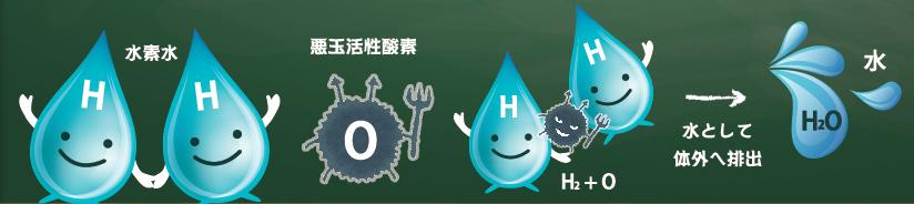 「水素水ごっくっく」のメリット1|完全定額で水素水が飲み放題