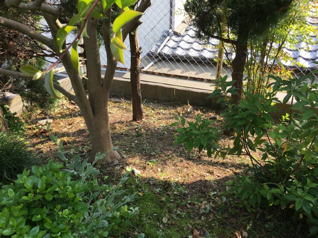 便利屋日報|日進市の一般宅にて庭の草刈りを行いました〜!!