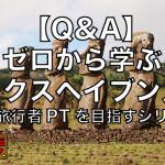 Q&A|ゼロから学ぶタックスヘイブン入門【永遠旅行者PTを目指すシリーズ】
